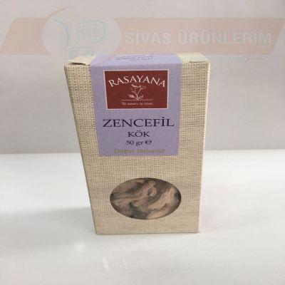 Kök Zencefil