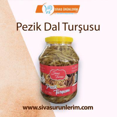 Pezik Dal Turşusu